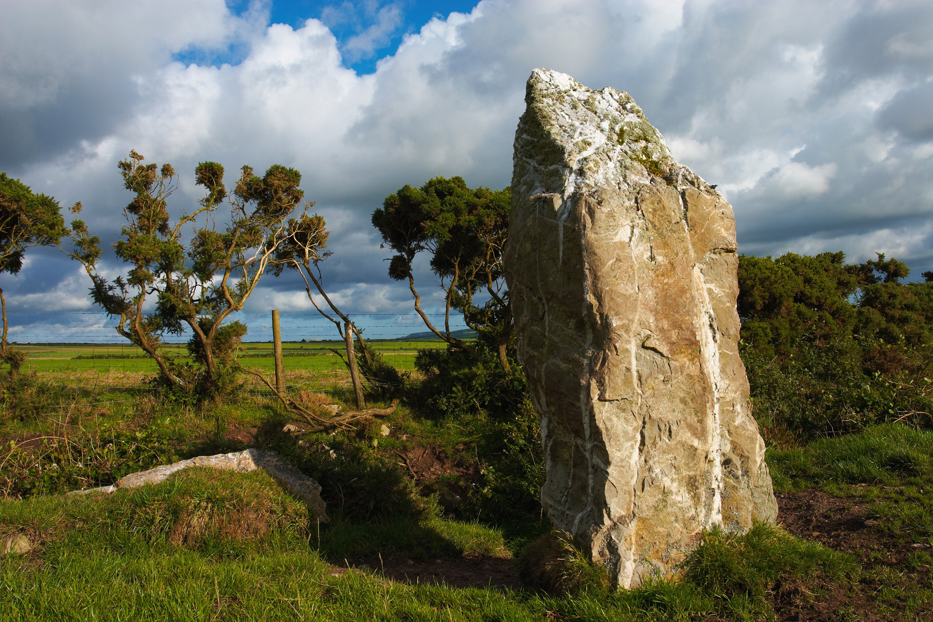 Nine Maidens Megalith