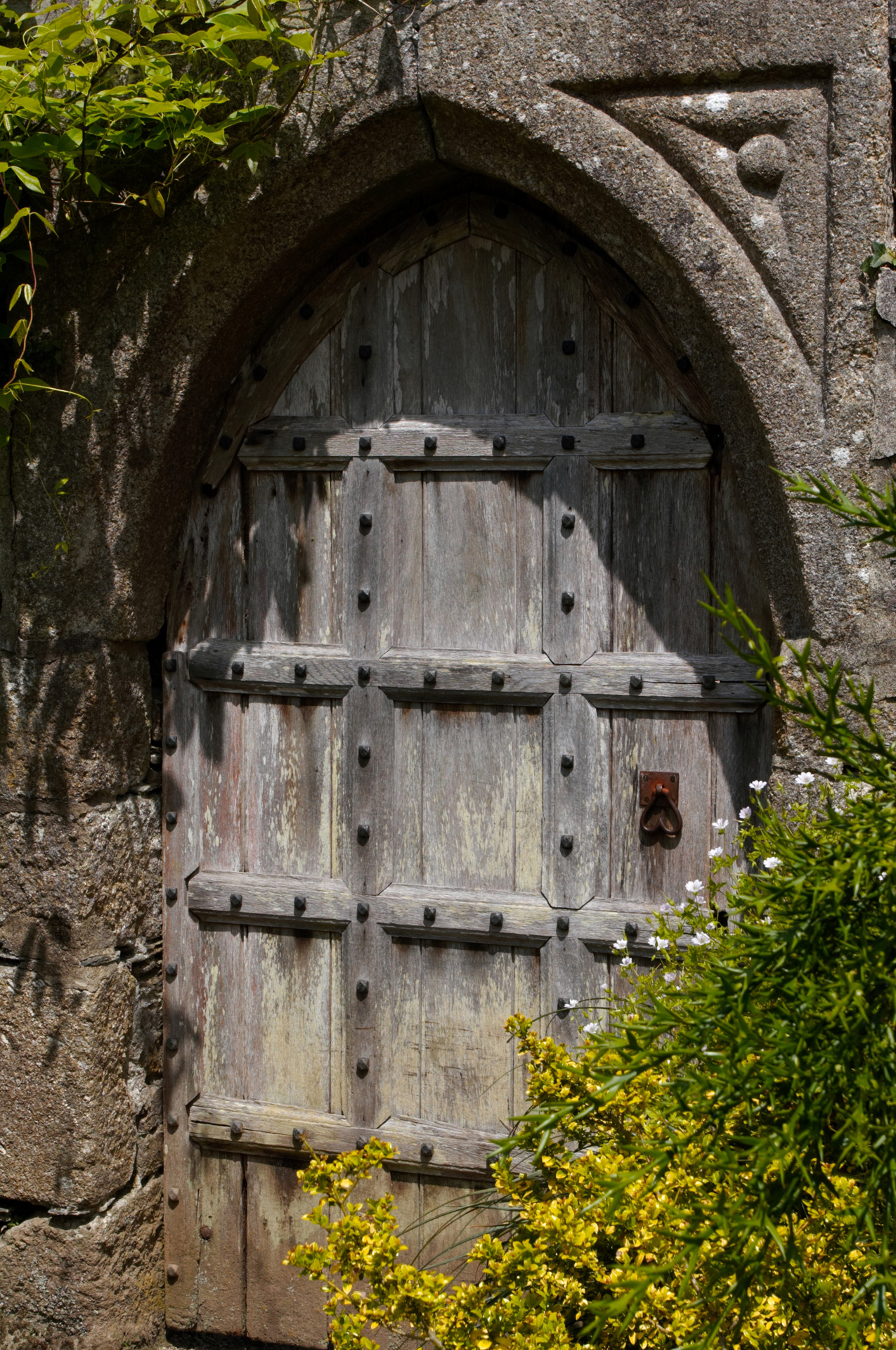 Door To The Secret Garden
