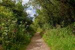 The path to Madron Celtic Chapel, near Penzance, Cornwall