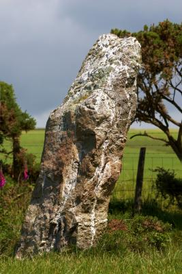 Nine Maidens Standing Stone, Seventh of Nine