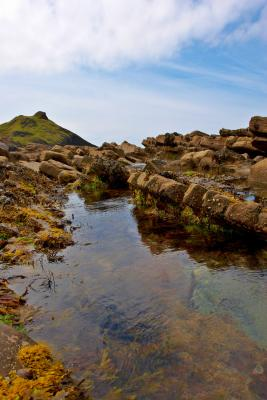 Millook Haven Rockpool
