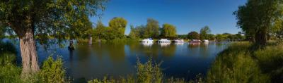 River Thames and Wittenham Clumps Panorama