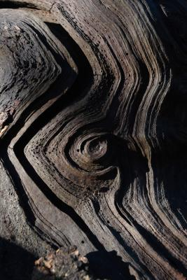 Old Grooved and Weathered Wood