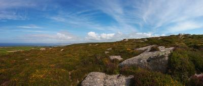 Rosewall Hill Heather, Gorse and Rocks Panorama