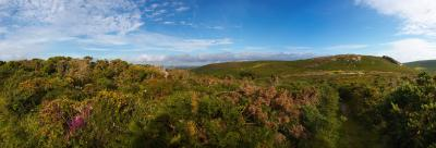 Rosewall Hill In The Evening Sunshine Panorama